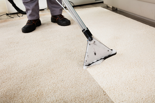 Domestic deep clean carpets